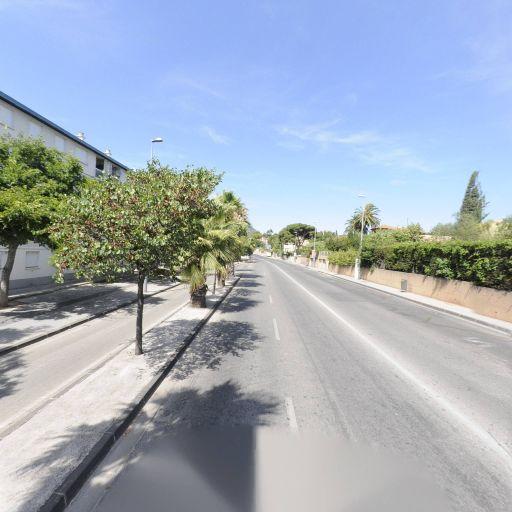 Lachemi Mounir - Coursiers - Toulon