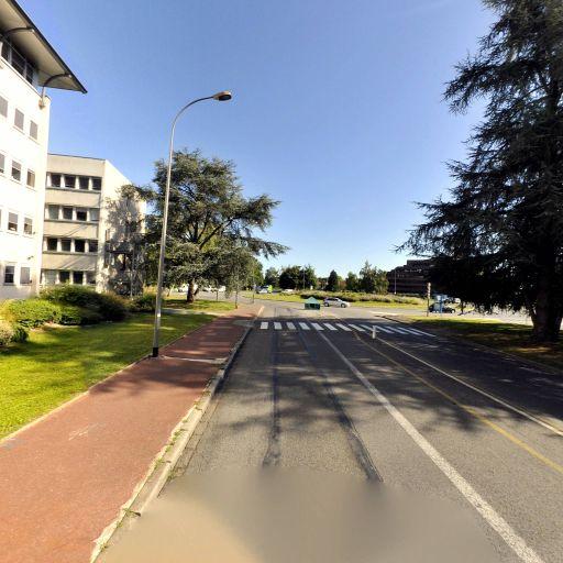 Cftc Maryse - Syndicat de salariés - Pau