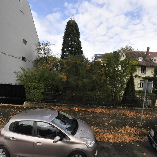 Berthelen Clavert Ludig Offner SCP - Médecin rhumatologue - Strasbourg