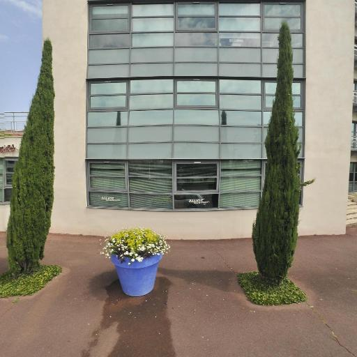 Centre d'Action Médico Sociale Précoce - Centre médico-social - Montauban